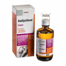 Амброксол-Тева сироп 15 мг/5 мл 100 мл